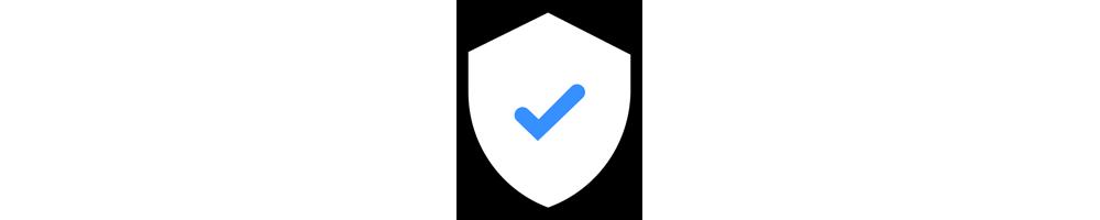 Website Security Essential
